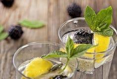 Cocktail di Blackberry Fotografia Stock