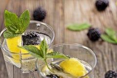 Cocktail di Blackberry Immagini Stock Libere da Diritti