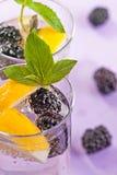 Cocktail di Blackberry Fotografie Stock