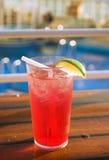 Cocktail di crociera Immagini Stock