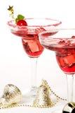 Cocktail di estate indiana immagine stock