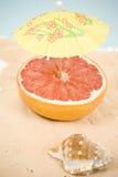 Cocktail di frutta Fotografia Stock
