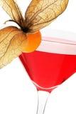 Cocktail di frutta rosso Immagini Stock Libere da Diritti