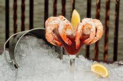 Cocktail di gambero su ghiaccio con l'oceano nella priorità bassa Immagine Stock Libera da Diritti