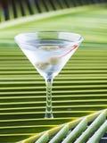 Cocktail di Martini Fotografia Stock Libera da Diritti