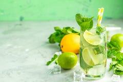 Cocktail di Mojito con calce e la menta in vetro di highball immagine stock libera da diritti