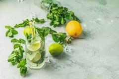 Cocktail di Mojito con calce e la menta in vetro di highball immagini stock