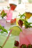Cocktail di Mojito di parecchi sapori tropicali Immagine Stock Libera da Diritti