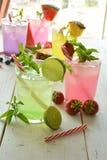 Cocktail di Mojito di parecchi sapori tropicali fotografie stock libere da diritti