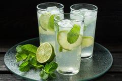 Cocktail di Mojito in un highball fotografie stock libere da diritti