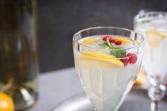 Cocktail di rinfresco con il mirtillo rosso ed il limone Fotografia Stock Libera da Diritti