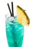 Cocktail di Rio Grande Fotografie Stock Libere da Diritti