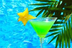 Cocktail di vetro Fotografia Stock Libera da Diritti