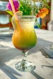 Cocktail do álcool Imagens de Stock Royalty Free