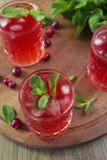 Cocktail do arando com hortelã e gelo Imagem de Stock Royalty Free