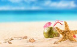 Cocktail do coco do verão na praia Fotografia de Stock