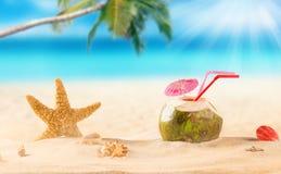 Cocktail do coco do verão na praia Fotos de Stock
