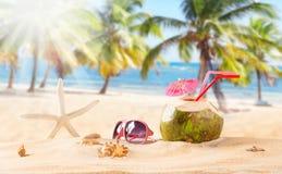 Cocktail do coco do verão na praia Imagens de Stock