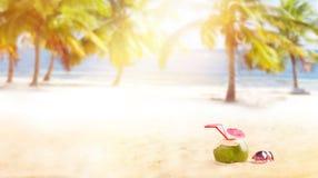 Cocktail do coco do verão na praia Imagem de Stock