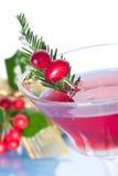 Cocktail do feriado Fotografia de Stock Royalty Free