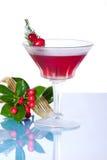 Cocktail do feriado fotos de stock royalty free