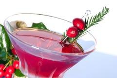 Cocktail do feriado imagens de stock