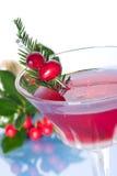 Cocktail do feriado fotografia de stock