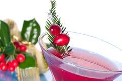 Cocktail do feriado foto de stock royalty free
