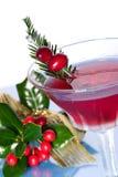Cocktail do feriado imagem de stock