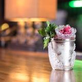 Cocktail do julepo de hortelã Imagens de Stock Royalty Free