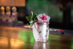 Cocktail do julepo de hortelã Fotos de Stock Royalty Free