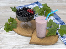 Cocktail do leite feito do corinto preto Imagem de Stock