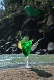 Cocktail do Natal foto de stock royalty free