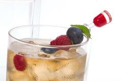 Cocktail do perfurador de Kew foto de stock royalty free
