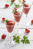 Cocktail do suco de tomate Imagem de Stock Royalty Free
