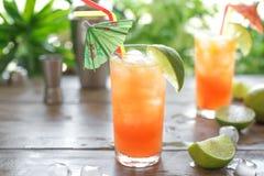 Cocktail do zombi fotografia de stock royalty free