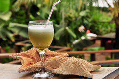 Cocktail drink. Composition with two starfish Stock Photo