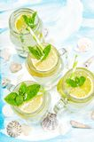 Cocktail drink lemon summer lemonade ice tea tonic water. Cocktail drink with lime, lemon, mint and ice. Cold summer lemonade, ice tea, tonic water Royalty Free Stock Images