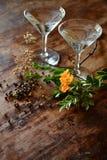 Cocktail e botanicals Immagine Stock