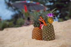 Cocktail em um abacaxi Fotografia de Stock Royalty Free