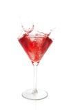 Cocktail esotico Immagine Stock Libera da Diritti