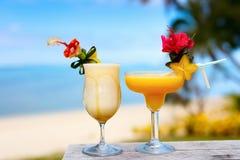 Cocktail exóticos Imagem de Stock