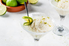 Cocktail floating margarita Royalty Free Stock Photo