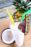 Cocktail frais Photo stock