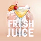 Cocktail frais de jus d'été Photographie stock