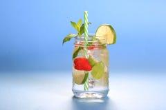 Cocktail frais de mojito Image libre de droits