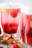 Cocktail frais et froid sur le fond blanc Image stock