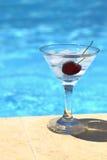Cocktail freddo con i cubetti di ghiaccio Immagini Stock