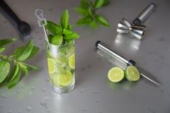 Cocktail freddo di Mojito immagini stock