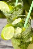 Cocktail fresco di mojito Fotografia Stock